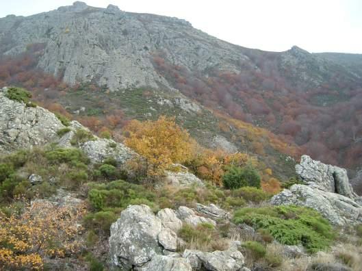 caroux 2017 berland paysage